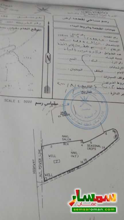 Ad Photo: Farm 28854 sqm in Shinas  Al Batinah