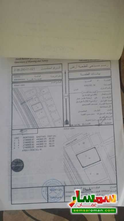 Ad Photo: Land 3000 sqm in Shinas  Al Batinah