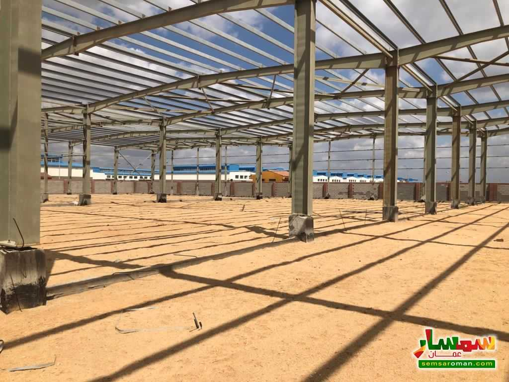 Ad Photo: All 14500 sqm in Minufiyah